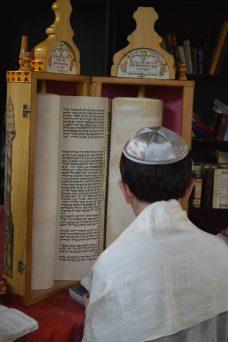 Torah6